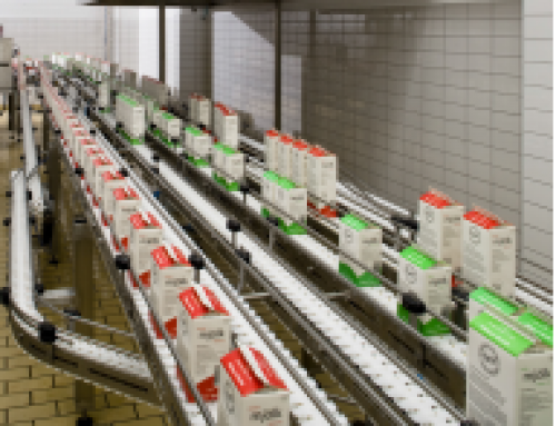 Carryline Belt Conveyors