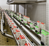 carryline conveyor system